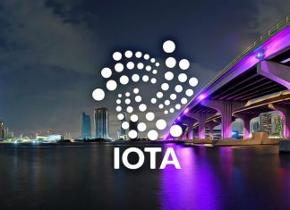 IOTA FOMO keeps market steady