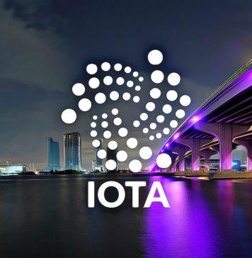 IOTA FOMO keeps market steady