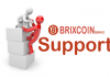 Brixcoin Support How To fix Transaction Too Large Error