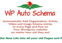 wp auto schema benefits