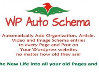 wp auto schema benefits